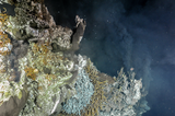 Hydrothermal vents and black smokers