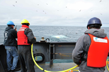 CCGS Tully crew members recover the remotely operated vehicle