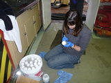 Reyna processing the sediment samples