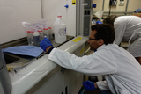 Scientist Martin Scherwath oversee sample processing