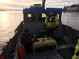 Campbell River field work